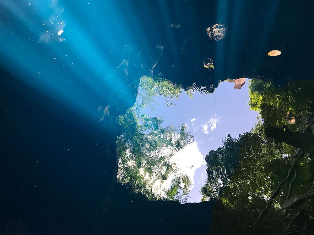セノーテの水面