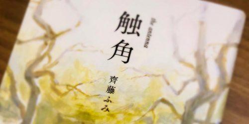 齊藤ふみの処女作『触角』の表紙➀