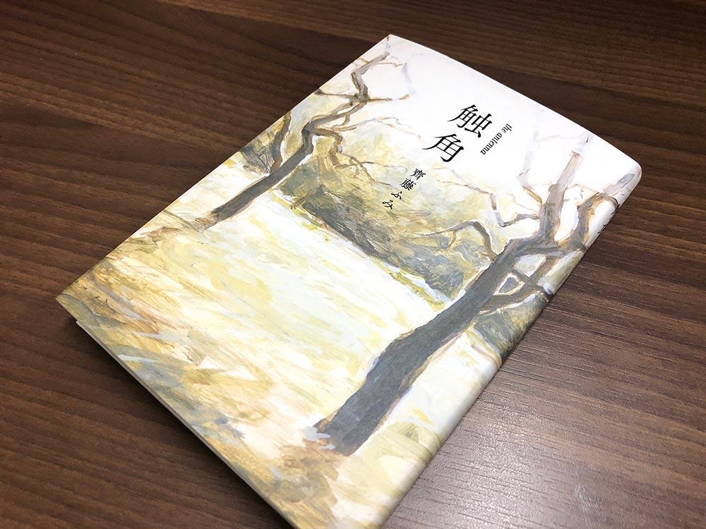 齊藤ふみの処女作『触角』の表紙②