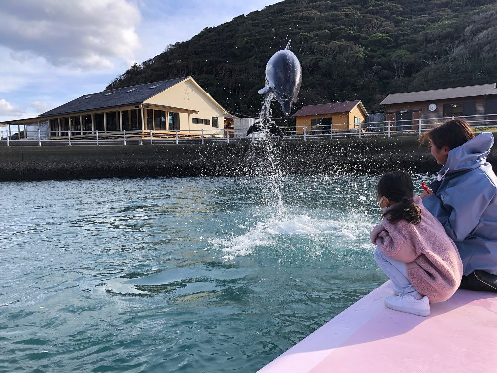 壱岐 海 海浜公園 壱岐イルカパーク&リゾート